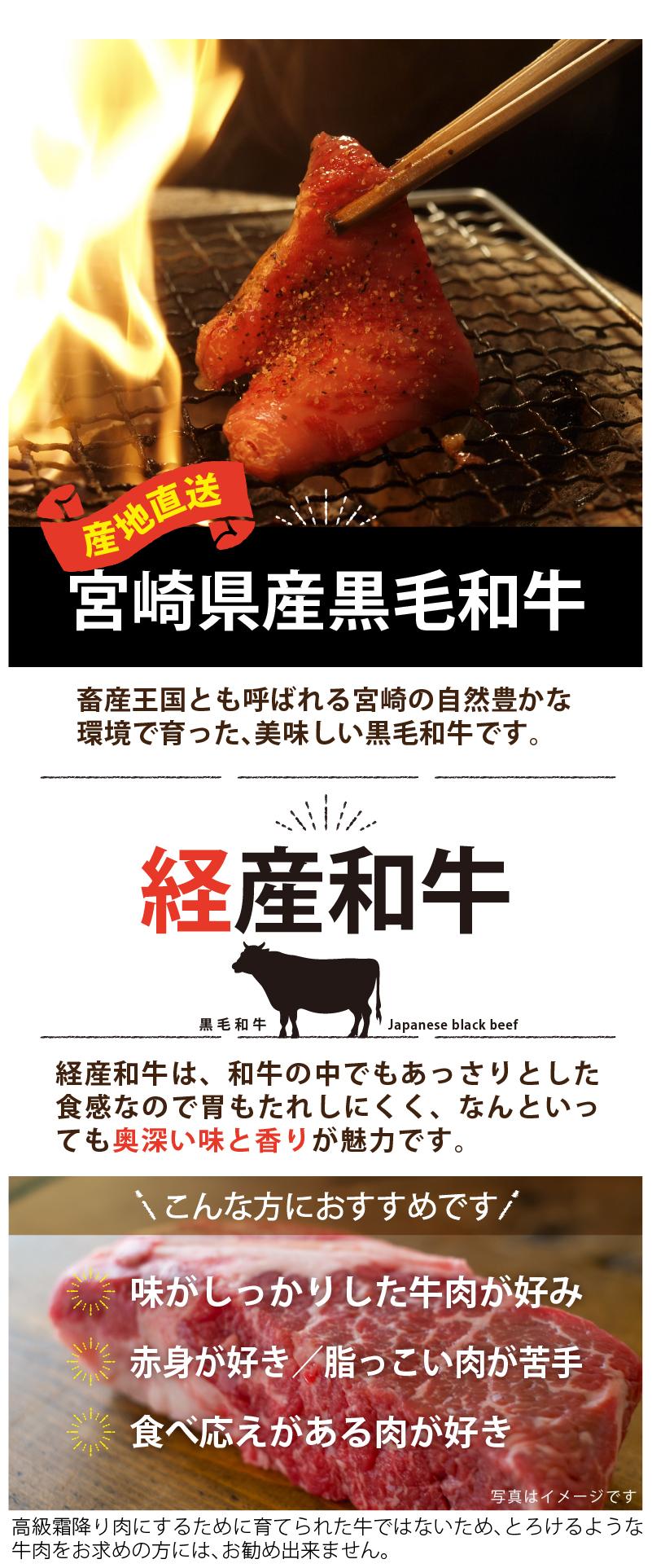 宮崎県産黒毛和牛ヒレブロック1kg