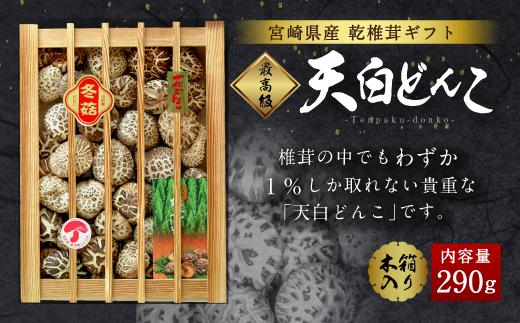 希少!椎茸の中でも1%しか採れない「天白どんこ」290g 贈答木箱入り_k-100