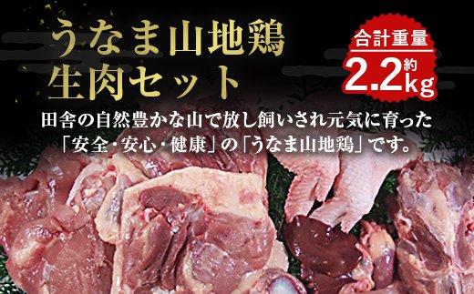 うなま山地鶏生肉セット