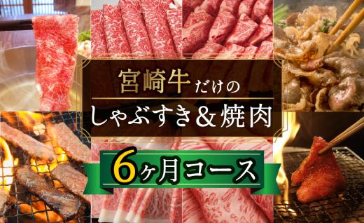 宮崎牛しゃぶすき&焼肉6ヶ月コース 合計4.2kg 【定期便】