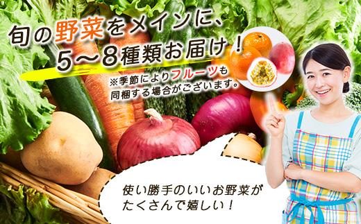 AA-635 鹿児島県枕崎産旬の野菜の詰め合わせ(5~8種類) 野菜セット 国産 九州 厳選