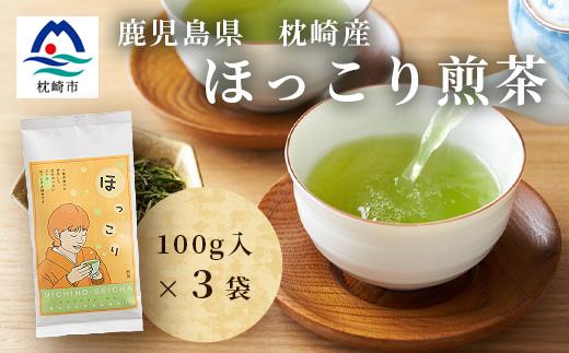 ほっこり煎茶【100g×3パック】道野製茶(一番茶葉のみ使用)