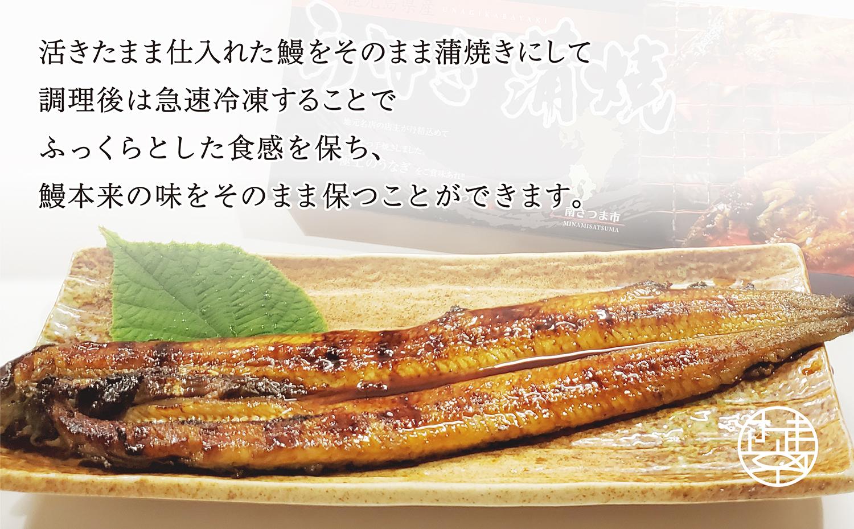 【鹿児島県産】活うなぎの蒲焼2尾