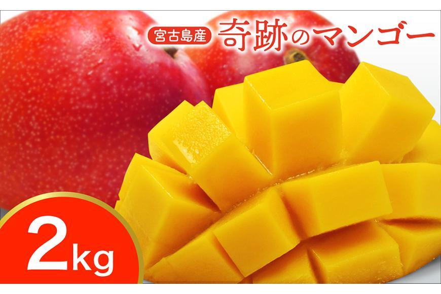 宮古島産 奇跡のマンゴー 2kg 優品