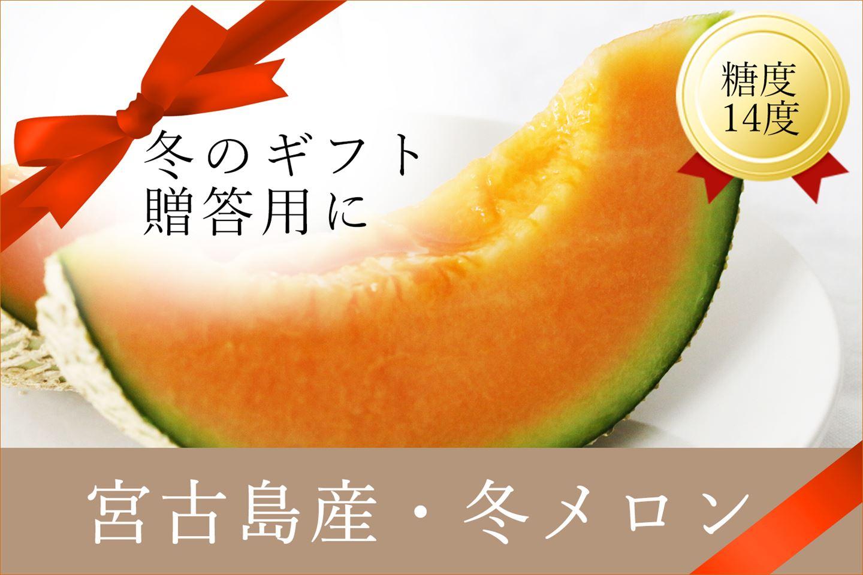 【早期受付】 毎年大好評!宮古島冬メロン(2L×2玉)贈答用 冬のギフト