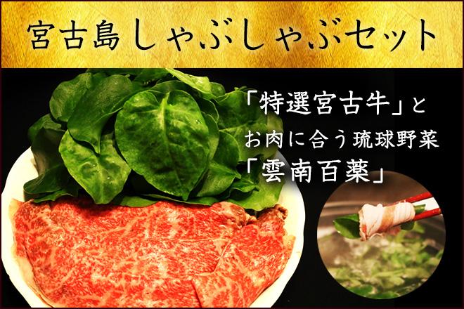 高級宮古牛しゃぶしゃぶ用800g&お肉に合う琉球野菜 雲南百薬のセット