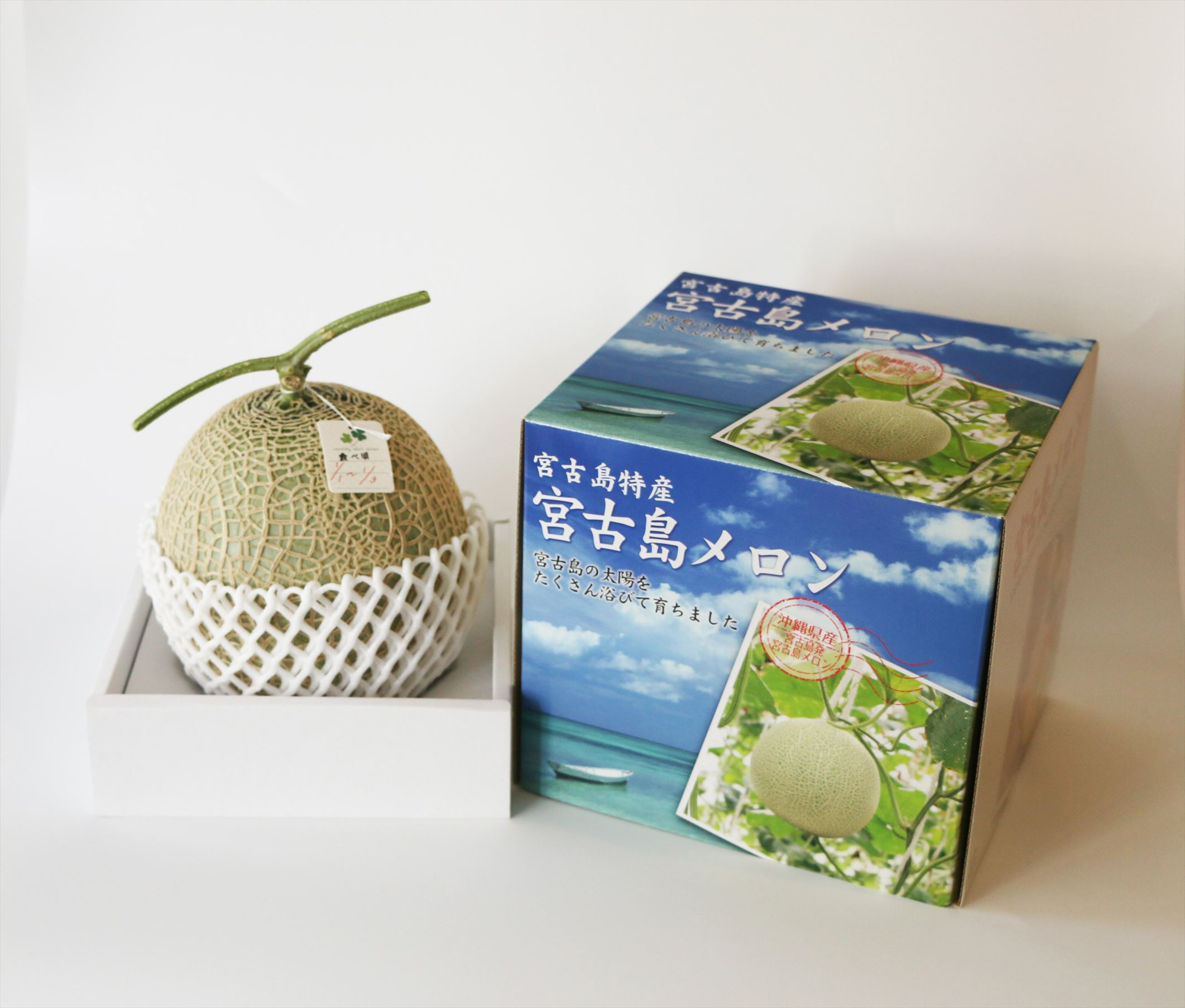 毎年大好評!宮古島冬メロン(3L×1玉)贈答用 冬のギフト