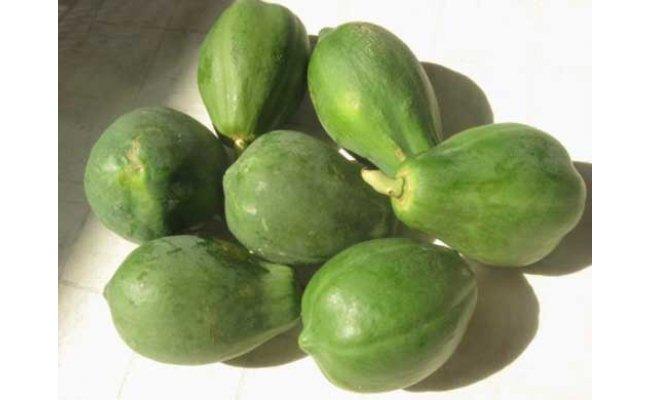 【宮古島産】酵素の王様!フレッシュな美味しさ、南国の青パパイヤ2kg!