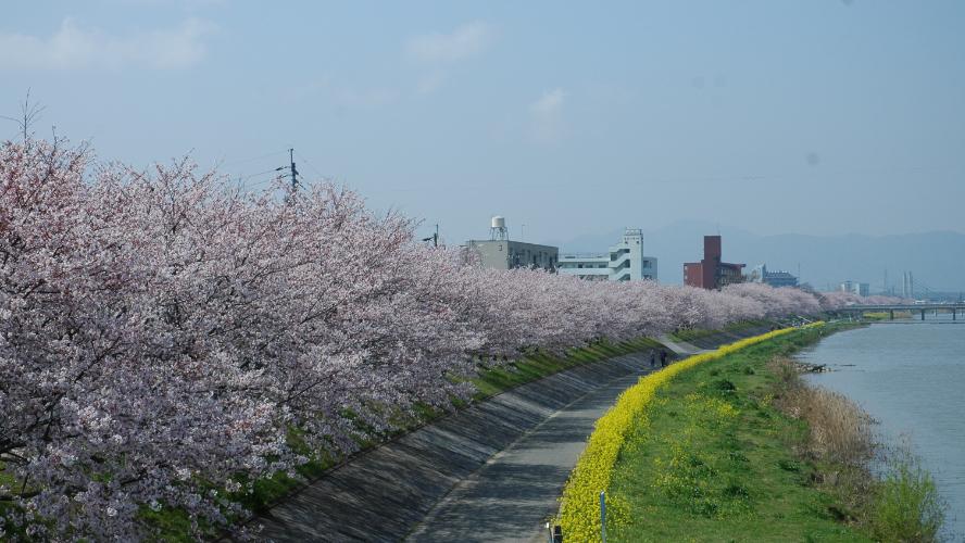 ふるさとパレットに福岡県行橋市が参加しました
