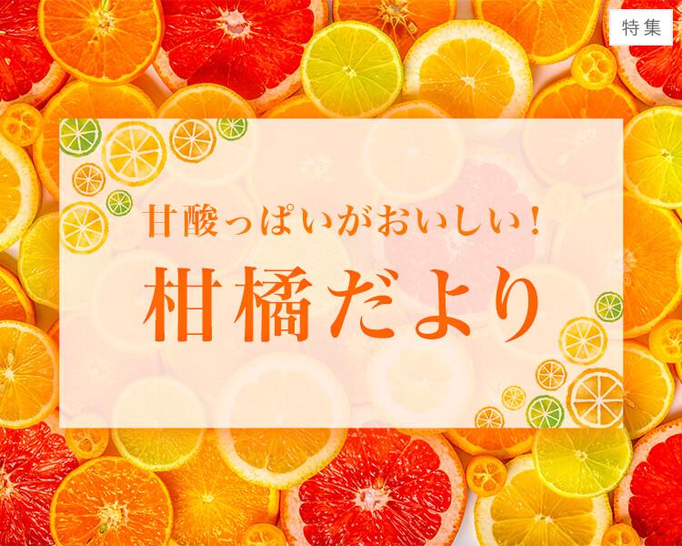 甘酸っぱいがおいしい!柑橘だより